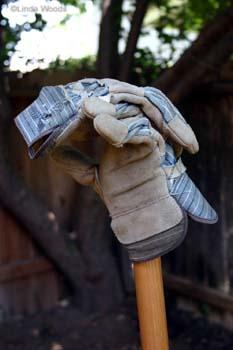 Gloves350
