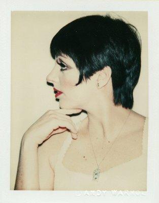 Liza Minnelli Andy Warhol