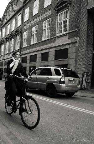 Copenhagen bike 2