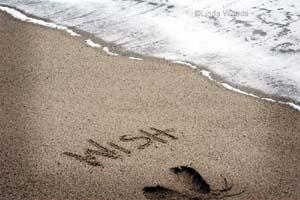 Wish300_3