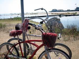 Bikessbx