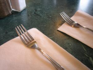 Forks300